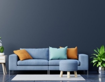 Things to know about furniture repair & carpet cleaning